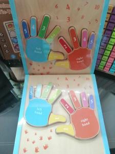 Joc Puzzle Lemn Montesorii 3D Palma - Puzzle Lemn 3D Numarul Degetelor7