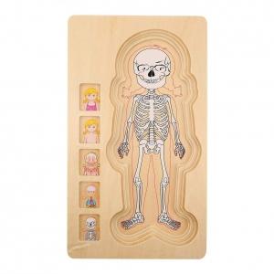 Puzzle Lemn Incastru Corpul Uman - Anatomie Onshine2