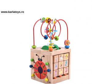 Cub Lemn Montessori educational Buburuza 6 in 16