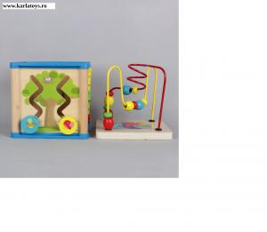 Cub din lemn 5 in 1 Wisdom Box1