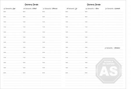 Agenda datata saptamanal personalizata pentru instructor auto cu fise pentru elevi [1]