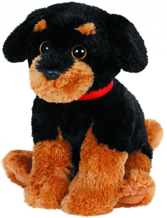 Brutus, pui de Rottweiler din plus, 33cm 0