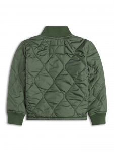 Jacheta matlasata verde [1]