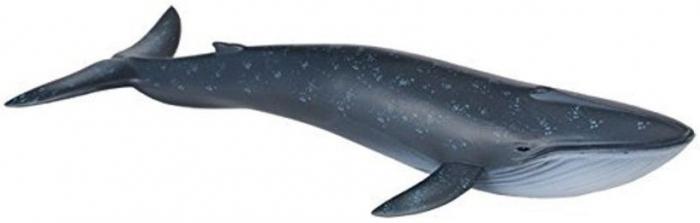 Figurina Balena Albastra Collecta 3