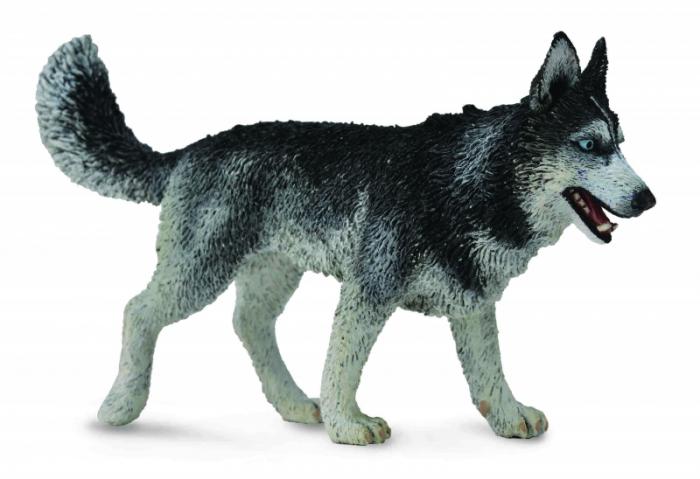 Figurina Caine Husky Siberian L Collecta 1