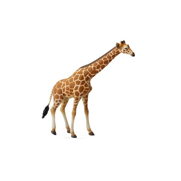 Figurina Girafa XL Collecta 3