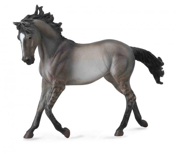 Mustang - Grulla 1
