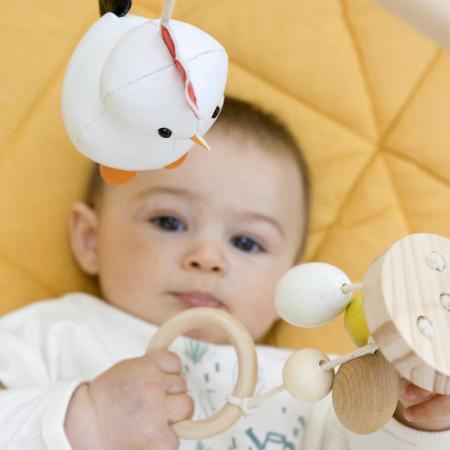 Arc activitati bebe - Ferma [1]