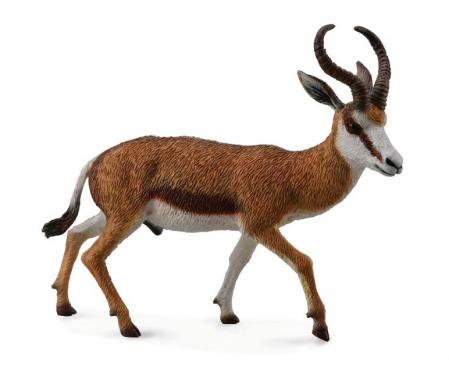 Figurina Antilopa Springbok L Collecta0