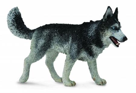 Figurina Caine Husky Siberian L Collecta0