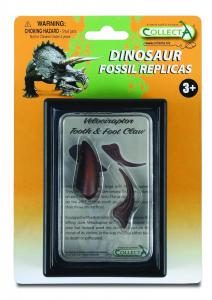 Figurina Dinte si Gheara de Velociraptor Box Set Collecta0