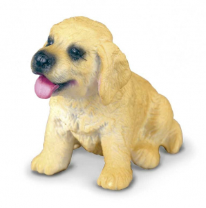 Golden Retriever Pui S Collecta0