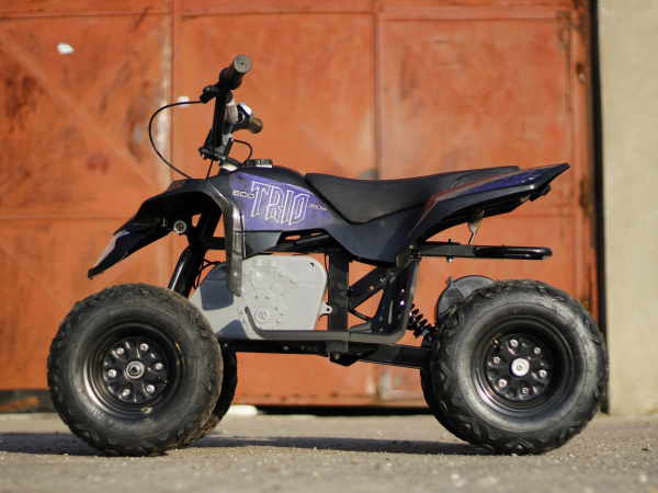 Mini ATV electric Pentru copii NITRO Eco Trio Quad 350W 24V #Albastru 5
