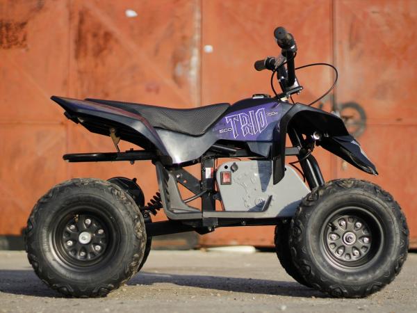 Mini ATV electric Pentru copii NITRO Eco Trio Quad 350W 24V #Albastru 6
