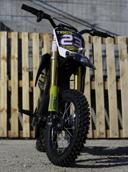 Motocicleta electrica Eco Tiger 1000W 36V 12/10 #Albastru 1