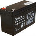 Acumulator 12V 7.2Ah pentru masinuta electrica 2