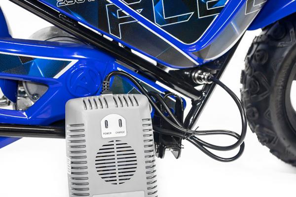 Mini Motocicleta electrica pentru copii NITRO ECO Flee 250W #Albastru 4