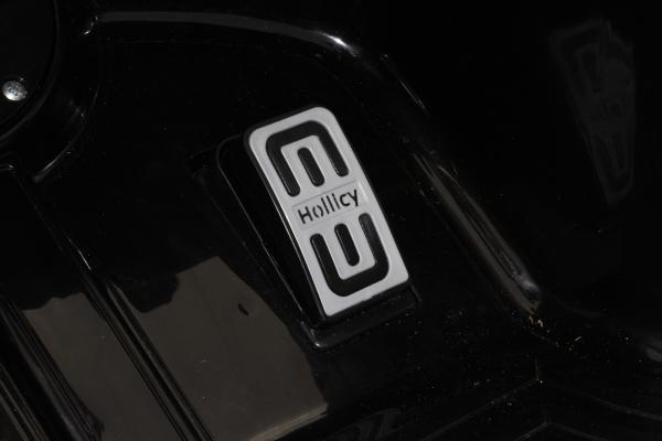 Masinuta electrica Mercedes GT-R 2x25W STANDARD #Negru 12