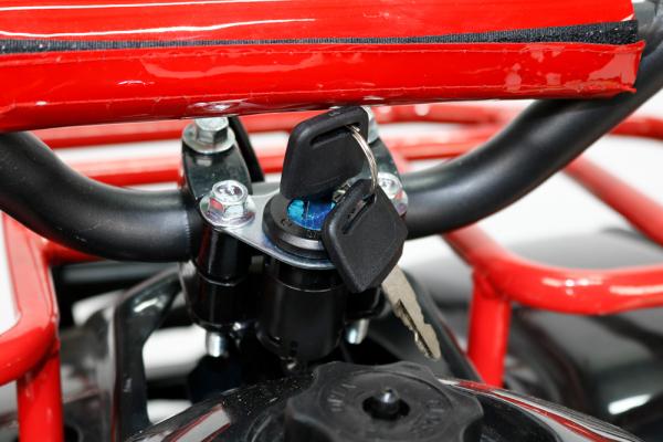 Mini ATV Electric Eco Torino Deluxe 1000W 48V cu 3 Trepte de Viteza #Rosu [5]