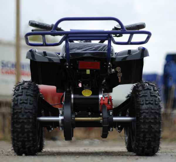Mini ATV Electric Eco Torino Deluxe 1000W 48V cu 3 Trepte de Viteza #Albastru 4