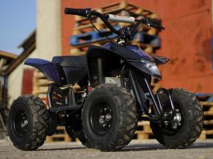 Mini ATV electric Pentru copii NITRO Eco Trio Quad 350W 24V #Albastru2