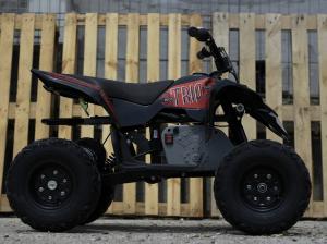 Mini ATV electric Pentru copii NITRO Eco Trio Quad 350W 24V #Rosu3