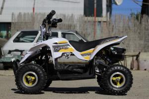 ATV electric ECO Maddox 800W 36V cu 3 Viteze #Galben8