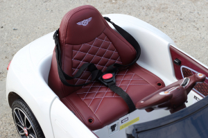 Masinuta electrica Bentley EXP12 PREMIUM #Alb6