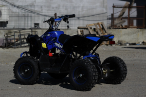 ATV Electric Eco Avenger 1000W 36V cu 3 Trepte de Viteza #Albastru7