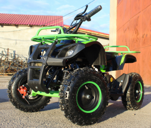 Mini ATV Electric Eco Torino Deluxe 1000W 48V cu 3 Trepte de Viteza #Verde2