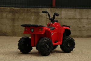 Mini ATV electric Panda BB3201 25W STANDARD #Rosu9