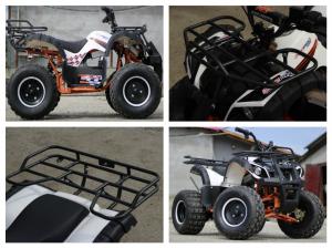 ATV electric Eco Toronto 1000W 48V 20Ah #Alb8