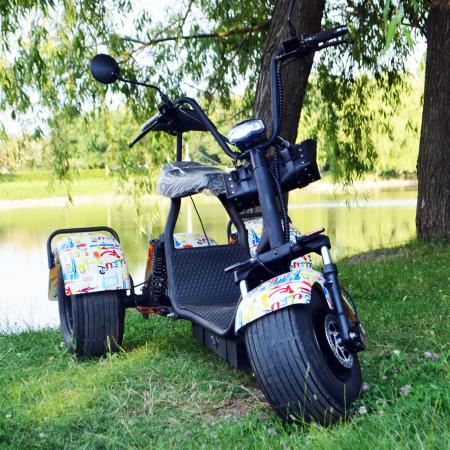 Scuter electric cu 3 roti Solley SMD-103 #Grafiti cu 2 locuri, putere 2000W, baterie 60V 20Ah [2]