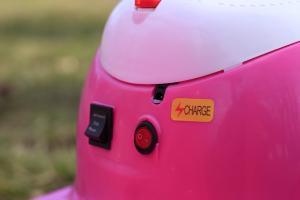 Tricicleta electrica pentru copii Princess 20W 6V #Roz8