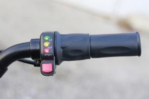 Trotineta electrica Twister Crosser X1 1000W 36V 10 Inch8