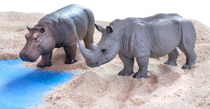 Animale din Africa realistice 6
