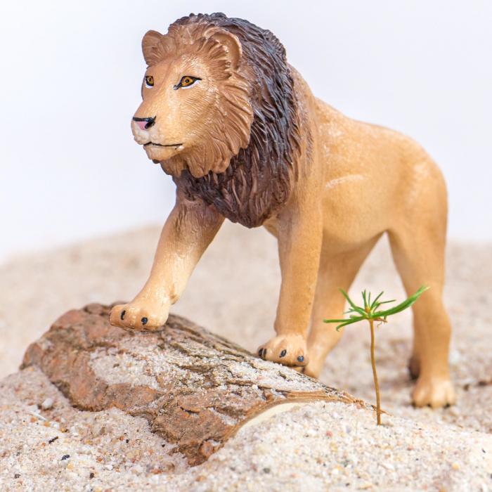 Animale din Africa realistice 3