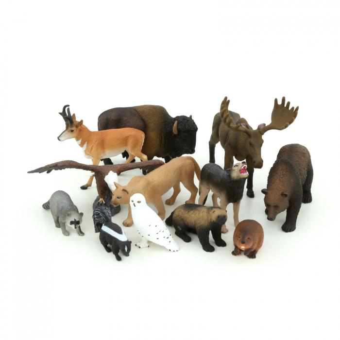 Animale din America de Nord [1]