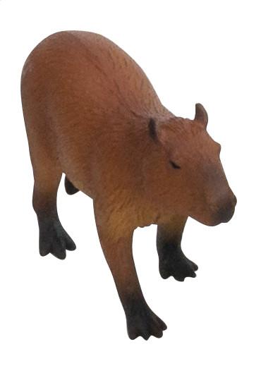 Animale din America de Sud 3