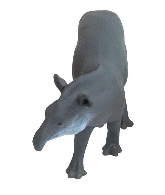 Animale din America de Sud 2