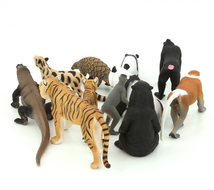 Animale realistice din Asia 2