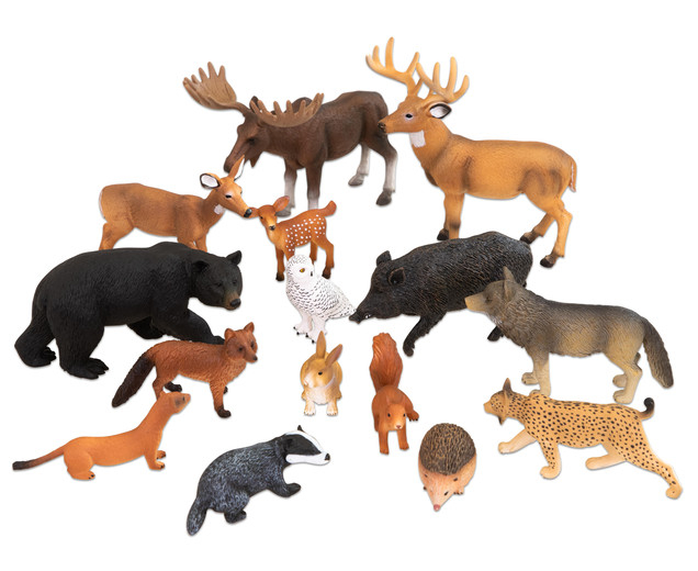 Animale sălbatice din Europa 3