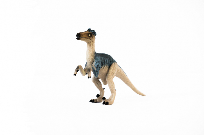 Dinozauri Deluxe [9]