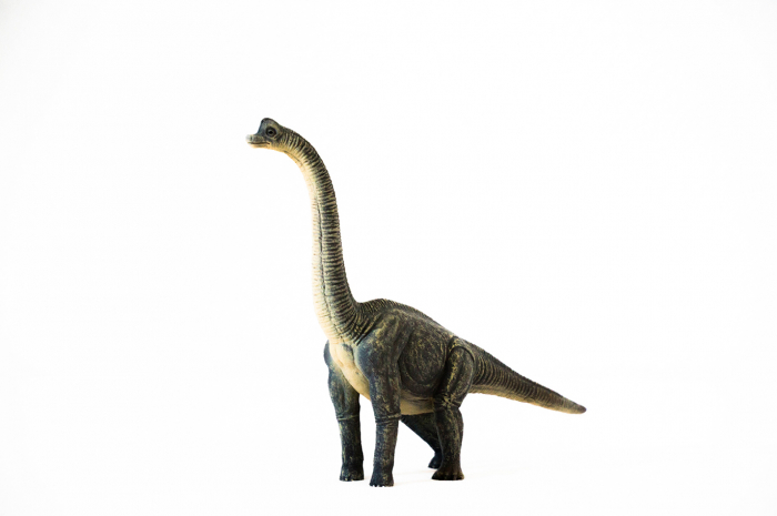 Dinozauri Deluxe [7]