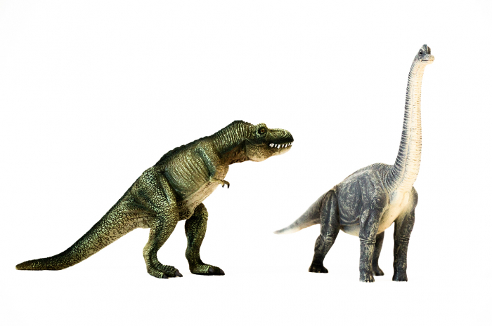 Dinozauri Deluxe [15]