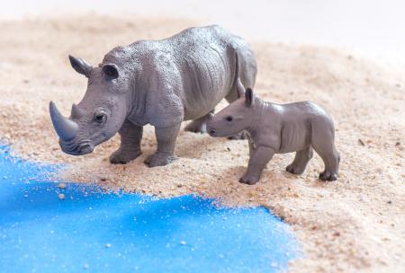 Animale de pe savana Africană3