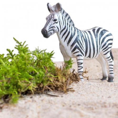 Animale din Africa realistice5