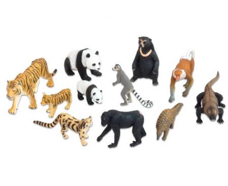 Animale realistice din Asia0