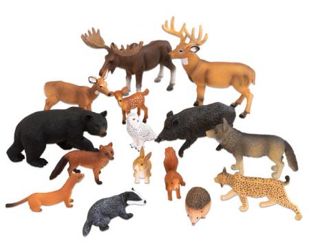 Animale sălbatice din Europa3
