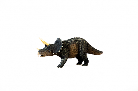 Dinozauri Deluxe [11]